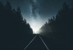 road, forest, milky way, stars, sky, night, railroad, rails wallpaper