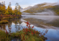 lake, fog, forest, autumn, nature, reflection wallpaper
