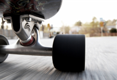 skateboard, skate, sport, speed, roller wallpaper