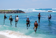 sri lanka, men, fishing, nature, sea, ocean wallpaper