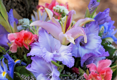 flowers, gladiolus, bouquet, lily, iris, lilies wallpaper