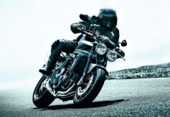 2010 triumph speed triple, motorcycle, bike, road, speed, triumph, triumph speed wallpaper