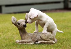 animals, dog, puppy, sculpture, deer, grass wallpaper