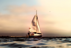 ocean, sailing, sport, california, sailboat, pacific, sea wallpaper
