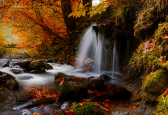 donca river, romania, nature, autumn, leaves, forest, river, stream, stones, waterfall wallpaper