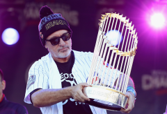 joe maddon, world series, major baseball league, chicago cubs, sport wallpaper