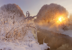 nature, snow, winter, river, sun, frost wallpaper