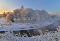 nature, winter, snow, trees, frost, sun, stream, steam wallpaper