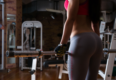 women, ass, yoga pants, sports bra, athletic, fitness model, gyms wallpaper