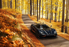 agera r, fall, cars, leaves, tree, koenigsegg, koenigsegg agera r, koenigsegg agera, autumn wallpaper