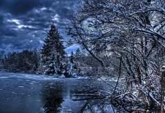 nature, winter, river, trees, fir trees, sky, clouds, forest wallpaper