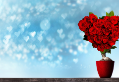 holidays, pot, tree, flowers, rose, heart, bokeh, valentines day wallpaper