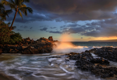 palm trees, pacific ocean, hawaii, coast, maui, sunset, makena cove, ocean, nature wallpaper