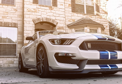 ford mustang gt350, cars, ford mustang, ford, sportcar wallpaper