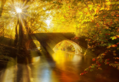 nature, autumn, park, canal, bridge, trees, sun rays wallpaper