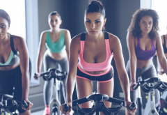 gym, group, women, girls, look, sporty, sexy wallpaper