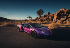 lamborghini aventador, car, supercar, purple car, lamborghini wallpaper