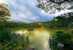 kyoto, japan, golden pavilion, pond, park, nature wallpaper