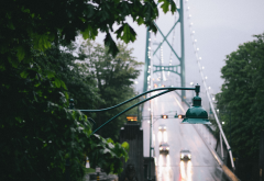 bridge, rain, leaves, city wallpaper