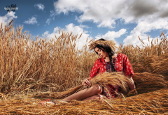 women, legs, wheat, field, brunette wallpaper