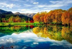 autumn, nature, pond, nature, reflection, lake, new zealand wallpaper