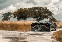 lamborghini huracan, supercar, cars, lamborghini, field, black car wallpaper