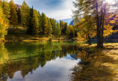 nature, autumn, october, switzerland, lake, trees wallpaper