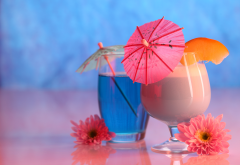cocktail, glass, flowers, food wallpaper