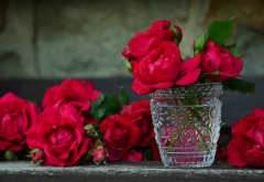 flowers, rose, bud, bouquet, nature wallpaper
