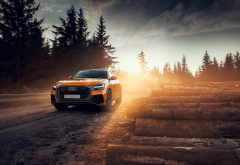 martin cyprian, audi q8, audi, orange car, logs, forest wallpaper