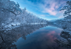winter, river, nature, snow, frost wallpaper