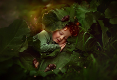 boy, art, sleeping boy, nature wallpaper